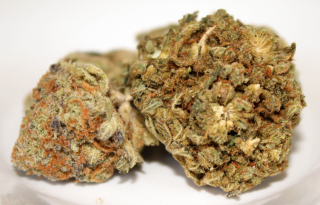 Medical cannabis flower legal